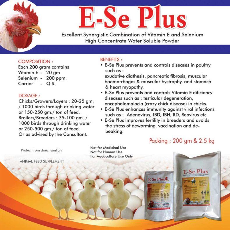 ESE-PLUS