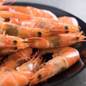 AQUACULTURE-SHRIMP-NUTRITION